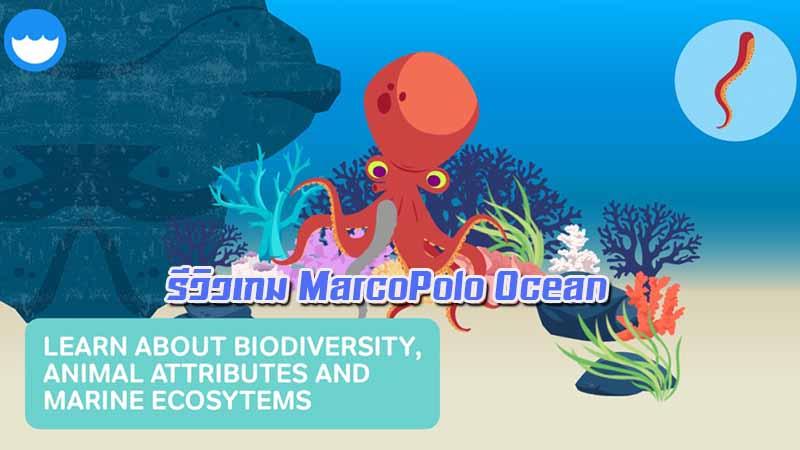 รีวิวเกม MarcoPolo Ocean